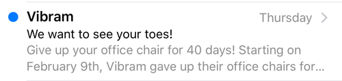 In this email Vibram used their preview text to complete a thought they started in their email message.